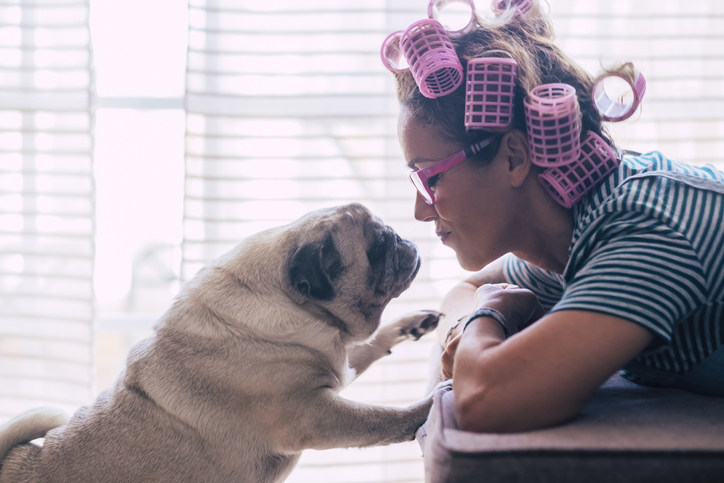 Woman and pug dog kissing each other while quarantine at home